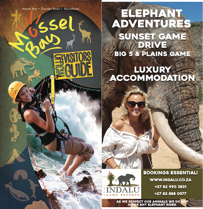 What to Do in Mossel Bay brochure
